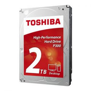 """HARD DISK 2 TB SATA 3 3.5"""""""" P300 (HDWD120UZSVA)"""